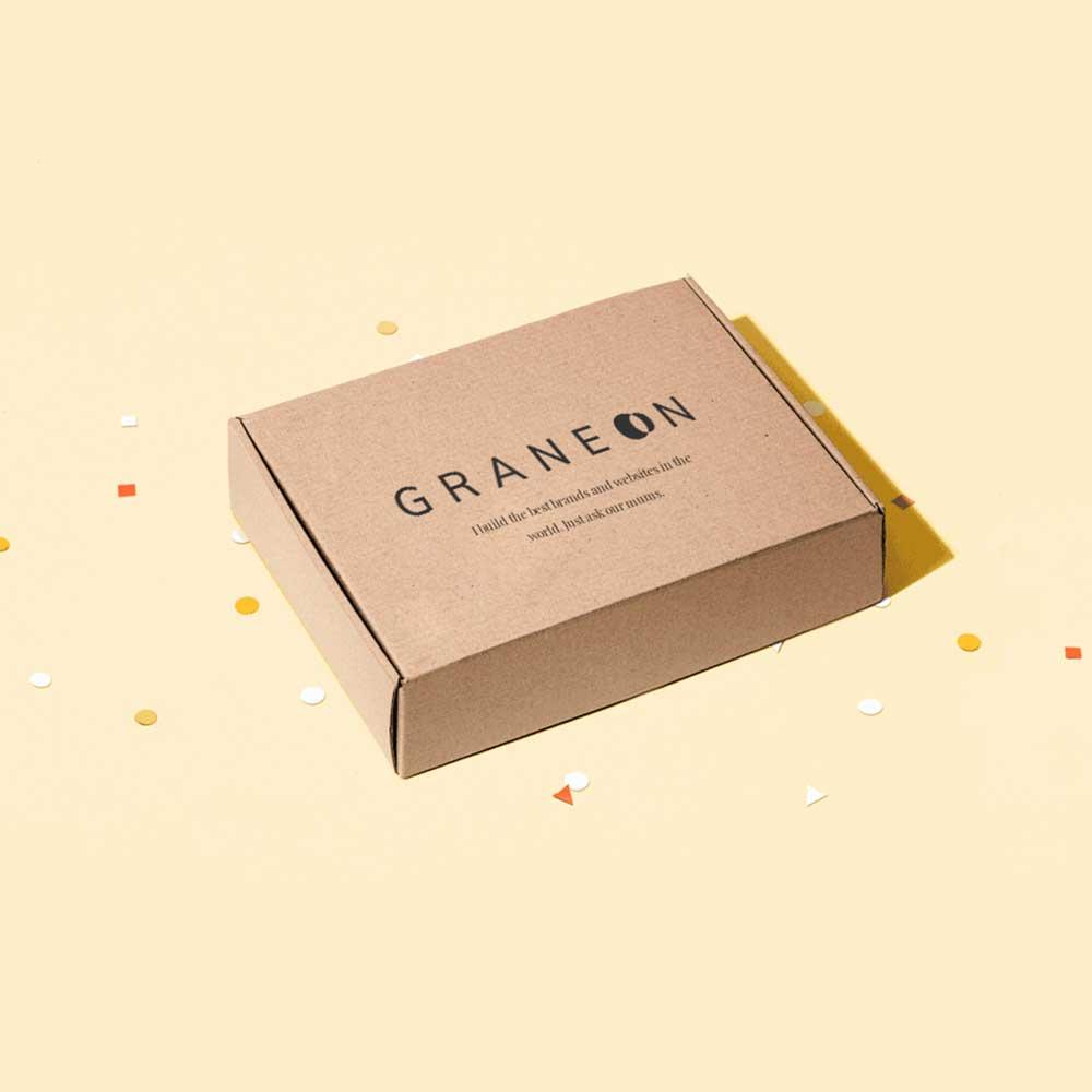 Mockup of Graneon